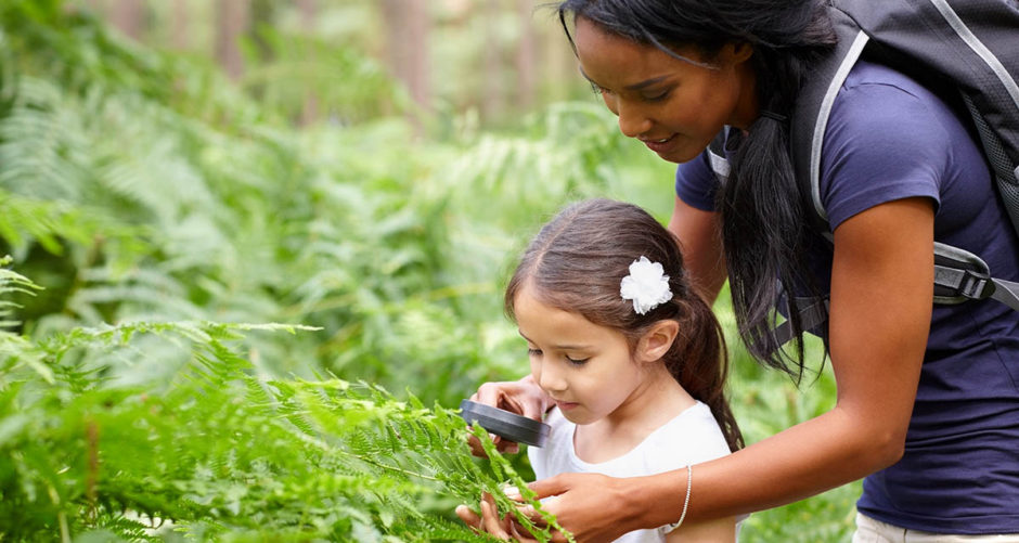 An adult is helping a girl look at a plant with a magnifying glass.